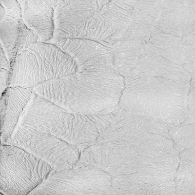 Белый структура